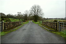 H5374 : Bridge along Cloghan Road, Drumnakilly by Kenneth  Allen
