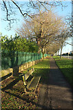 SE2853 : Churchyard wall and railings, Otley Road by Derek Harper