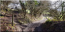SU7224 : Lythe Lane Junction with Footpath by Paul Collins