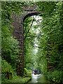 SJ6930 : High Bridge in Woodseaves Cutting, Shropshire by Roger  Kidd