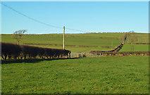 NY0265 : Farmland at Caerlaverock by Mary and Angus Hogg