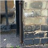 SK5903 : Bench mark, New Walk Museum by Alan Murray-Rust