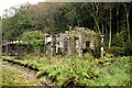 SD1098 : Ruined building beside the Ravenglass and Eskdale Railway by Jeff Buck