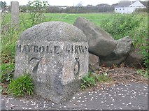 NS2005 : Old Milestone by the A77, Turnberry, Kirkoswald by Milestone Society
