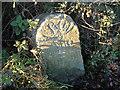 SX8174 : Old Milestone by T Jenkinson