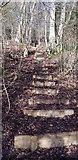 SU7225 : Steps in Ridge Hanger by Paul Collins