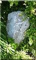SD5375 : Old Boundary Marker by Milestone Society