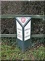 SJ9219 : Old Boundary Marker by Milestone Society