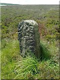 SD9620 : Old Boundary Marker on White Holme Moss by Milestone Society