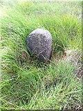 SD9620 : Old Boundary Marker on Round Hills, White Holme Reservoir by Milestone Society