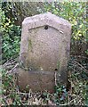 SP6359 : Old Milestone by J Higgins