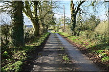 H6056 : Shadows along Sess Road by Kenneth  Allen
