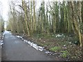 SE5306 : Fly-tipped rubbish in Hanging Woods by Christine Johnstone