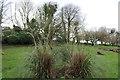 NX3260 : Church Grounds, Kirkcowan by Billy McCrorie