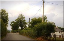S9060 : Rural road in County Wexford by N Chadwick