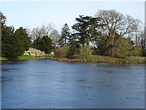 SO8744 : Frozen lake in Croome Park by Philip Halling