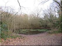 TQ2255 : Priests Mere Pond, Banstead Heath by Malc McDonald