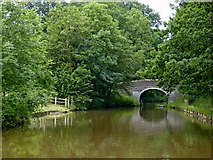SJ6641 : Canal south of Cox Bank in Cheshire by Roger  Kidd