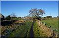 SE2128 : Kirklees  Way near Springfield Farm by Ian S