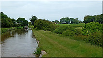 SJ6541 : Shropshire Union Canal near Cox Bank, Cheshire by Roger  Kidd