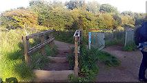 SJ8093 : Kissing gate on path near bridge over Chorlton Brook, Chorlton Ees by Phil Champion