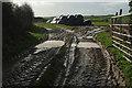 SW9271 : Mud and bales near St Issey by Derek Harper