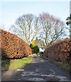 NZ0560 : Painshawfield Road by Trevor Littlewood