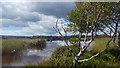 SZ0384 : West side of Little Sea, Studland Heath, Dorset by Phil Champion