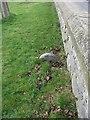 SH7882 : Parish boundary stone, Llandudno by Meirion