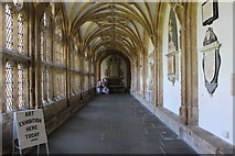 ST5545 : Wells Cathedral  (5) by Chris' Buet