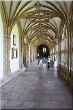 ST5545 : Wells Cathedral (6) by Chris' Buet