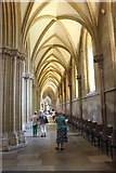 ST5545 : Wells Cathedral  (7) by Chris' Buet