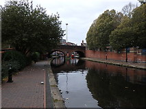 SP0586 : Birmingham Canal New Main Line, Birmingham by Rudi Winter