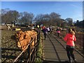 SK3582 : Graves parkrunners and a curious cow by Graham Hogg