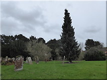 SP2760 : St Peter, Barford: churchyard (b) by Basher Eyre
