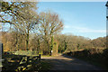 SX8683 : Track around Holden Cross Wood by Derek Harper
