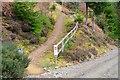 NT3435 : Mountain bike trail, Plora Rig by Jim Barton