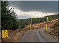 NH3508 : Power Line access road at Auchteraw by valenta