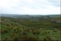 SH6130 : Rough grazing above Gerddi Bluog by DS Pugh