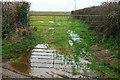 SW9671 : Wet gateway near Tredruston Farm by Derek Harper