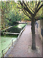 TQ3580 : Ornamental channel and footpath leading to Wapping Woods, Shadwell by Robin Stott