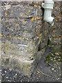 ST6149 : Benchmark near Binegar Green by Neil Owen