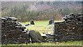 SH7610 : Ruined slate mill - Tafarn-fâch by John Lucas