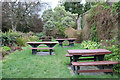 NS2309 : Picnic Area  at the Walled Garden, Culzean Country Park by Billy McCrorie