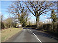TM2868 : B1116 Laxfield Road, Dennington by Adrian Cable