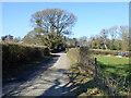 TQ3031 : Crawley Lane by Robin Webster