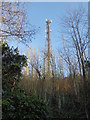 TQ5699 : Radio mast above the Kelvedon Hatch Secret Nuclear Bunker by Marathon