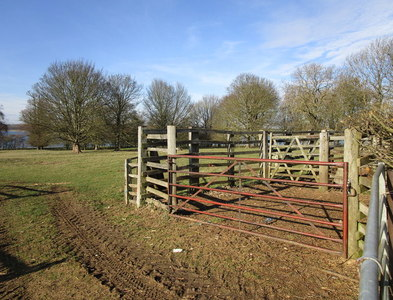 SK9407 : Cattle pens in Normanton Park by Jonathan Thacker