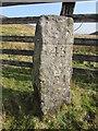 NY8912 : Old County Boundary Marker by Matthew Hatton