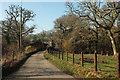 SX7658 : Lane at Leigh Bridge by Derek Harper